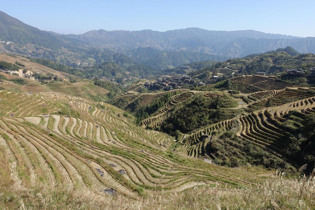Guilin – Longsheng Rice Terraces