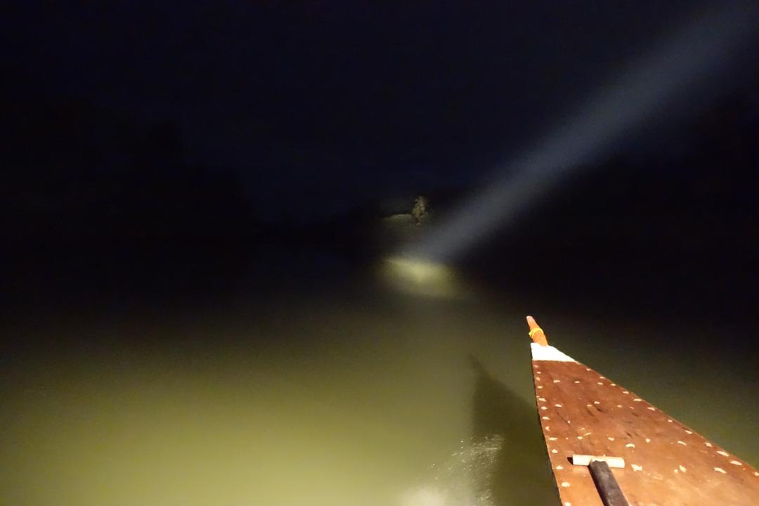 Loboc – Fireflies