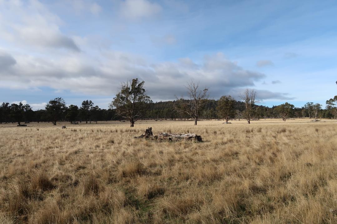 Central Tasmania Round Trip