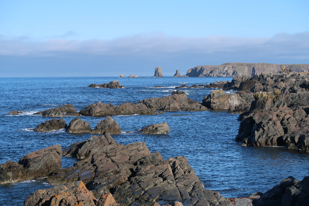 Cape Spear to Cape Bonavista